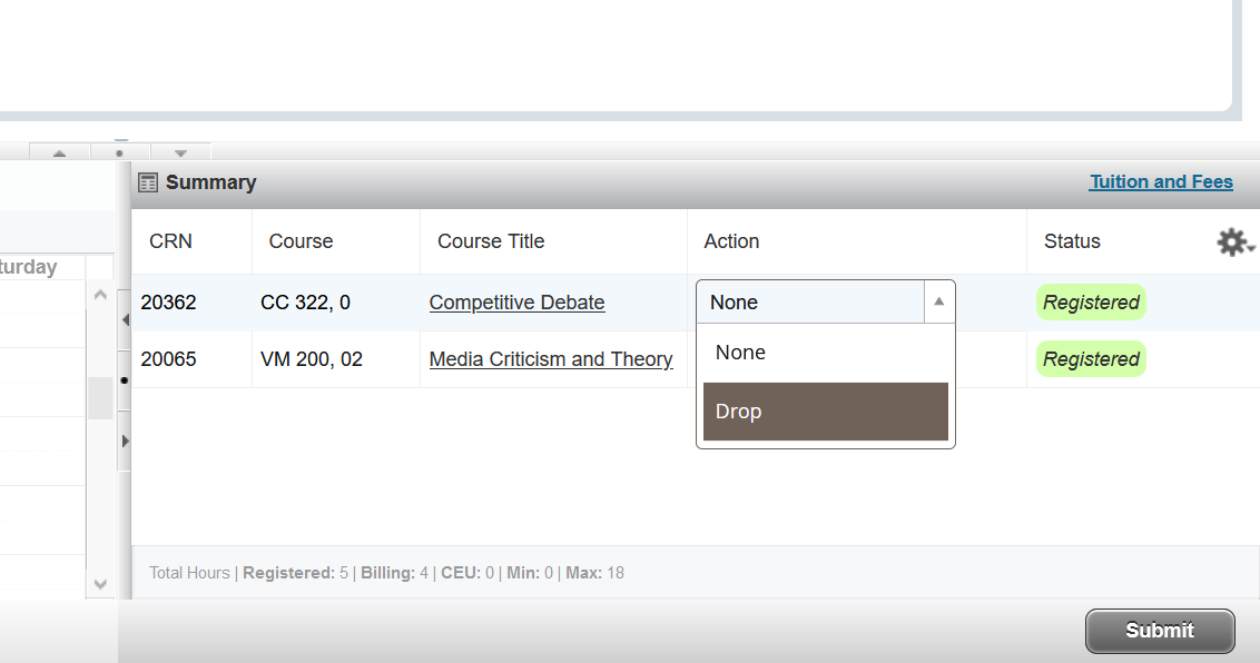 Screenshot of registration Summary and drop option being submitted