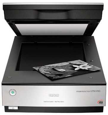 Epson Perfection V750 Pro open with white backing card in place