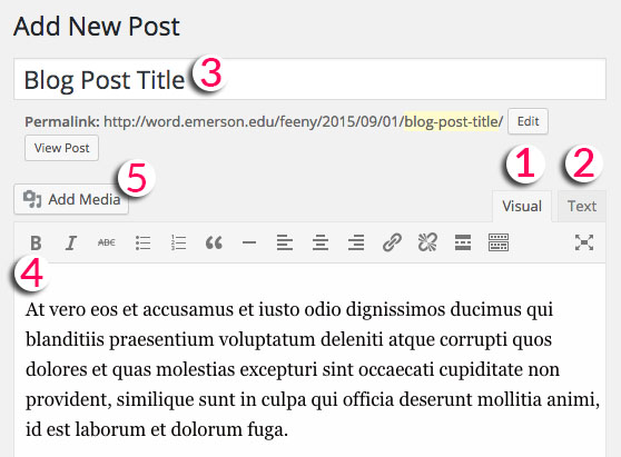 Anatomy of a post, including title, body, editor tabs, and media button.