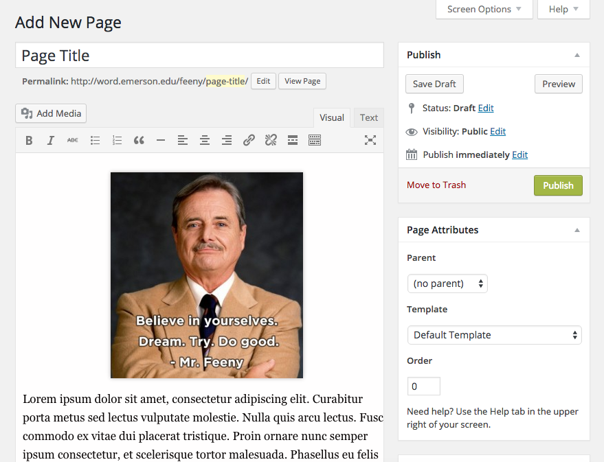 Image of editing a WordPress page.